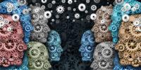 bron mellan hjärnor och kroppar